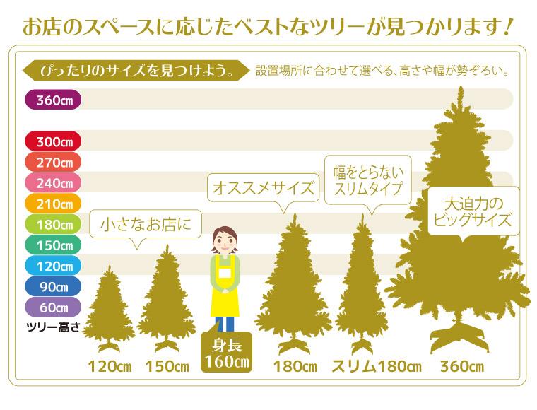 ①②ツリーのサイズ